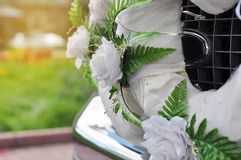 Wedding decoration on the car Stock Photography