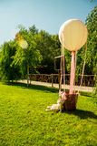 Wedding decoration objects sunny summer day Stock Photography