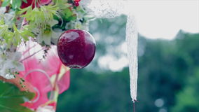 Wedding decoration, red apple, white laces stock video footage