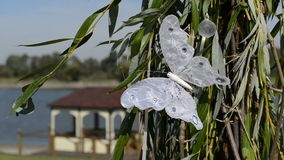 The wedding decoration with white butterfly. Which moves from the wind stock footage