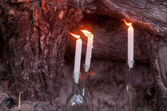 Wedding decorations in rustic style. Outing ceremony. Wedding in nature. Candles in bottles in forest Royalty Free Stock Photography