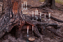 Wedding decorations in rustic style. Outing ceremony. Wedding in nature. Candles in bottles in forest Royalty Free Stock Image