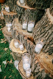 Wedding decorations in rustic style. Outing ceremony. Wedding in nature. Candles in decorated goblets Stock Photos