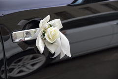 Wedding decorations - white rose with a ribbon Royalty Free Stock Image