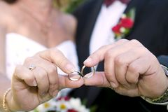 Wedding details - rings Royalty Free Stock Image