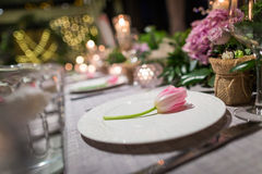 Wedding dinner Royalty Free Stock Photos