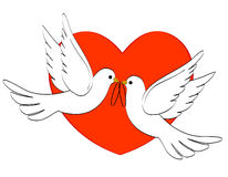 Wedding doves. Two loving white pigeons carrying two wedding rings and red heart background for wedding invitations , valentine's day cards Stock Image