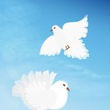 Wedding doves2 Stock Photography