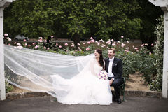 Wedding dress caught by the wind royalty free stock photo