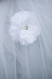 Wedding dress detail. Stock Images