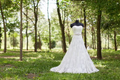 Wedding dress. On the grass Stock Photography