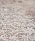 Wedding dress lace Royalty Free Stock Photo