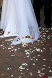 Wedding dress with petals Stock Images