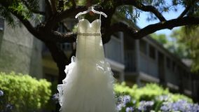 Wedding dress on a tree.  stock video footage