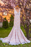 Wedding dress. On the tree in the wooden house Royalty Free Stock Images