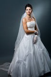 Wedding dress and veil Stock Photo