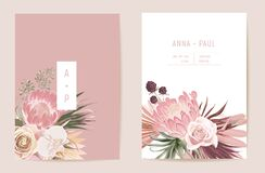 Free Wedding Dried Protea, Orchid, Pampas Grass Floral Save The Date Set. Vector Exotic Dry Flower, Palm Leaves Stock Photo - 213950770