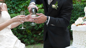 Wedding drink Stock Image