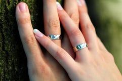 Wedding duas mãos Imagem de Stock Royalty Free