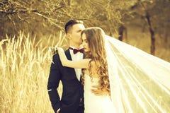 Free Wedding Embracing Couple Royalty Free Stock Photo - 129471165