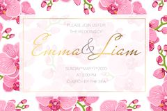 Wedding event invitation card template. Rectangular border frame decorated with bright pink orchid phalaenopsis flowers. Wedding event invitation card template vector illustration