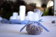 Wedding Favor. Sunflower seeds in white tulle with blue ribbon Stock Photo