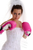 Wedding Fight Royalty Free Stock Photos