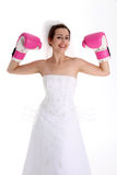 Wedding Fight Stock Photography
