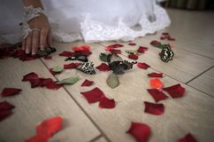 Wedding floor with red petals and butterflies. Close uo bride touches red roses` petals and butterflies on floor Royalty Free Stock Photo