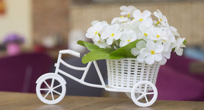 Wedding Floral boquet on a model bicycle Royalty Free Stock Photo