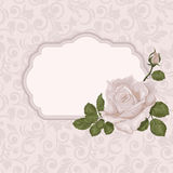 Wedding floral card with frame. Rose of pastel colors. Stock Photography