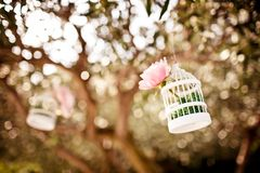 Wedding floral decoration on the tree Stock Photography