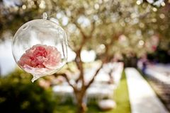 Wedding floral decoration on the tree Royalty Free Stock Images