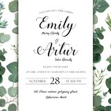 Wedding floral hand drawn invite invitation card design: Eucalyp Royalty Free Stock Photos