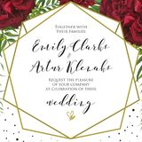 Wedding floral invite, invitation card design with red burgundy. Rose flowers, palm leaves, green berries, elegant geometrical golden frame and black polka dot royalty free illustration