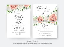 Wedding floral invite, RSVP, thank you card vector design set wi. Th creamy white garden peony flowers blush pink roses, green leaves, greenery herbs, eucalyptus Stock Images