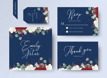Wedding floral invite, thank you, rsvp card design set with red. And white garden rose flowers, seeded eucalyptus branches, leaves, amaranthus frame on navy Stock Images