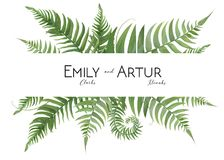 Wedding floral watercolor invite, invitation, save the date card. Design with tropical forest greenery leaves & green fern fronds decorative natural border Royalty Free Stock Photo