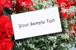 Wedding Flower Stock Photography