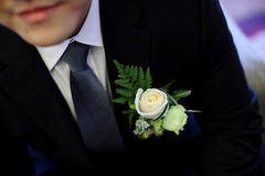 Wedding flower for bridegroom Royalty Free Stock Images
