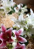 Wedding Flowers. Bridal bouquet and bridesmaids flowers in delivery box Stock Photography