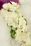 Wedding flowers. Bouquet of orchids in bride's hands Stock Image