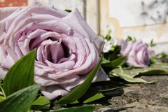 Wedding flowers. Wedding details, flowers bouquet out the church Stock Images