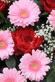 Wedding flowers in pink and red Stock Photography