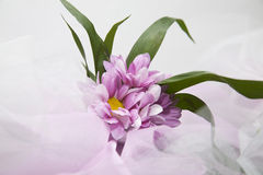 Wedding flowers.  veil background Royalty Free Stock Photos