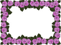 Wedding frame from flowers Stock Images