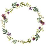 Wedding frame wreath green and purple flowers ornament. Hand drawing watercolor Wedding frame wreath green and purple flowers ornament stock illustration