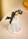 Wedding fun Royalty Free Stock Photo