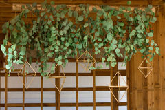 Wedding garland of living plants. Green leaves in the garland Stock Photos