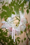 Wedding garter on the plant, bride`s morning, fees.  Royalty Free Stock Photos
